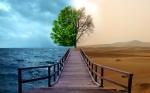 Environment and Humans